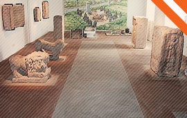 Stadtmuseum Wels – Minoriten / Archäologische Sammlung